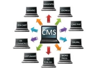 Web Content Management Systems